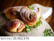 Купить «Sweet bun with nut filling in powdered sugar», фото № 26062616, снято 24 апреля 2017 г. (c) Peredniankina / Фотобанк Лори