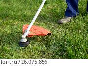 Купить «Mowing the grass», фото № 26075856, снято 13 мая 2015 г. (c) Татьяна Карасева / Фотобанк Лори