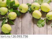 Купить «green apples on wooden background», фото № 26093736, снято 16 июля 2016 г. (c) Майя Крученкова / Фотобанк Лори