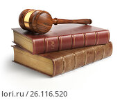 Купить «Gavel and lawyer books isolated on white. Justice, law and legal concept.», фото № 26116520, снято 20 мая 2019 г. (c) Maksym Yemelyanov / Фотобанк Лори