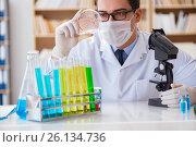 Doctor studying virus bacteria in the lab. Стоковое фото, фотограф Elnur / Фотобанк Лори