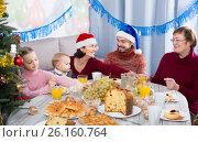 Купить «Glad family members making conversation», фото № 26160764, снято 16 августа 2018 г. (c) Яков Филимонов / Фотобанк Лори