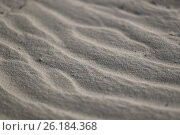 Купить «Песок», эксклюзивное фото № 26184368, снято 13 сентября 2016 г. (c) Вероника / Фотобанк Лори