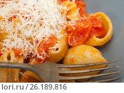 Купить «Italian snail lumaconi pasta with tomatoes», фото № 26189816, снято 14 апреля 2017 г. (c) Francesco Perre / Фотобанк Лори