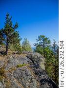 """Гора """"Синяя"""", вид с Кудрявого камня. Стоковое фото, фотограф Александр Агафонов / Фотобанк Лори"""