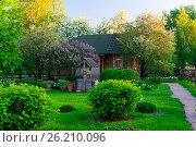 Купить «Россия, красивый деревенский дом с садом и огородом», фото № 26210096, снято 6 июня 2019 г. (c) glokaya_kuzdra / Фотобанк Лори