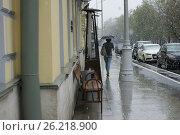Купить «May 8, 2017, snowfall in the streets of Moscow», фото № 26218900, снято 8 мая 2017 г. (c) Ткачёва Ольга / Фотобанк Лори