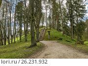 Купить «Путь к холму», фото № 26231932, снято 30 апреля 2017 г. (c) Geraldas Galinauskas / Фотобанк Лори