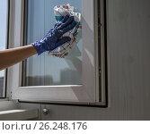Купить «Рука в синей перчатке с тряпкой моет оконное стекло», фото № 26248176, снято 2 мая 2017 г. (c) Светлана Ельцова / Фотобанк Лори