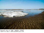 Spring landscape. Snow melting. Стоковое фото, фотограф Станислав Сергеев / Фотобанк Лори