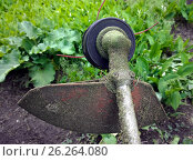 The head of the lawnmower reel after grass mowing. Стоковое фото, фотограф Oleksandr Khalimonov / Фотобанк Лори