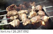 Купить «Barbecue of meat roasted on charcoal», видеоролик № 26267092, снято 14 мая 2017 г. (c) Кузьмов Пётр / Фотобанк Лори