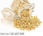 Купить «Raw green buckwheat in bank on white background», фото № 26267608, снято 9 марта 2017 г. (c) Ольга Сергеева / Фотобанк Лори