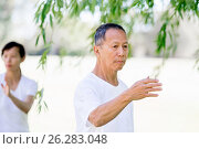 Купить «People practicing thai chi in park», фото № 26283048, снято 19 декабря 2014 г. (c) Sergey Nivens / Фотобанк Лори