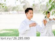 Купить «People practicing thai chi in park», фото № 26285080, снято 19 декабря 2014 г. (c) Sergey Nivens / Фотобанк Лори