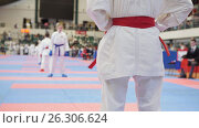 Купить «Athlete tatami is preparing for battle», фото № 26306624, снято 29 мая 2020 г. (c) Константин Шишкин / Фотобанк Лори