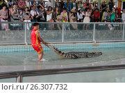 Крокодил-шоу (2017 год). Редакционное фото, фотограф Александр Княжецкий / Фотобанк Лори