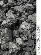 Каменный уголь. Стоковое фото, фотограф Анатолий Бутырин / Фотобанк Лори