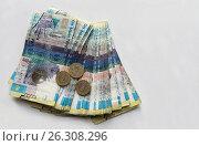 Национальная валюта - тенге. Стоковое фото, фотограф Анатолий Бутырин / Фотобанк Лори