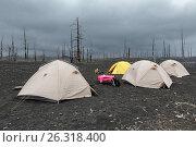 Купить «Туристические палатки в Мертвом лесу на Камчатке», фото № 26318400, снято 23 марта 2019 г. (c) А. А. Пирагис / Фотобанк Лори