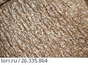 Купить «close up of granite stone surface», фото № 26335864, снято 20 февраля 2017 г. (c) Syda Productions / Фотобанк Лори