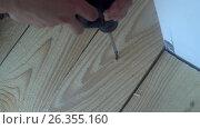 Купить «Male hand twist the screw into a wooden Board using a power screwdriver», видеоролик № 26355160, снято 21 мая 2017 г. (c) Роман Будников / Фотобанк Лори