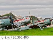 Купить «Antonov-2 airplanes on parking lot», фото № 26366400, снято 23 августа 2008 г. (c) Сергей Буторин / Фотобанк Лори