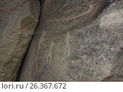 Купить «Petroglyphs made by primeval man. Gobustan national park. Azerbaijan», фото № 26367672, снято 26 апреля 2017 г. (c) Аркадий Захаров / Фотобанк Лори