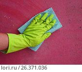 Купить «Hand in the glove cleans mold», фото № 26371036, снято 15 марта 2017 г. (c) Kira_Yan / Фотобанк Лори