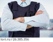 Купить «Security guard of the port with hands folded», фото № 26385356, снято 26 апреля 2019 г. (c) Wavebreak Media / Фотобанк Лори