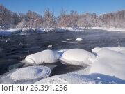 Купить «River Koksha surrounded by trees under hoarfrost and snow in Altai region in winter season», фото № 26391256, снято 19 января 2017 г. (c) Serg Zastavkin / Фотобанк Лори