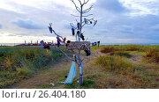 Купить «Finding tree, Vind Boom, dead tree with lost properties of the beach, Netherlands», фото № 26404180, снято 20 октября 2016 г. (c) age Fotostock / Фотобанк Лори