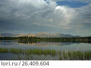 Купить «Calm mountain lake and grass near the shore. Yakutia, Omulewska the Midlands. Якутия, Омулёвское среднегорье.», фото № 26409604, снято 23 июля 2009 г. (c) Сергей Карпухин / Фотобанк Лори