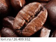 Купить «Кофейное зерно крупным планом на фоне других зерен», фото № 26409932, снято 29 марта 2009 г. (c) Александр Гаценко / Фотобанк Лори