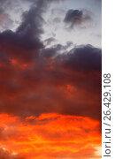 Купить «Тучи на закатном небе», фото № 26429108, снято 1 августа 2008 г. (c) Valeriy Novikov / Фотобанк Лори