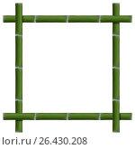 Empty frame of bamboo stalks, vector illustration. Стоковая иллюстрация, иллюстратор Купченко Евгений / Фотобанк Лори