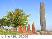 Купить «Stone phalluses (menhirs) in the ancient settlement of Metsamor, Armenia», фото № 26450056, снято 13 октября 2016 г. (c) Анна Мартынова / Фотобанк Лори