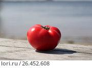 Купить «Спелый помидор», фото № 26452608, снято 12 октября 2016 г. (c) Вероника / Фотобанк Лори