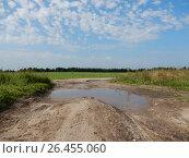 Купить «Разбитая грунтовая дорога через поле в Ногинском районе Московской области», эксклюзивное фото № 26455060, снято 23 августа 2016 г. (c) lana1501 / Фотобанк Лори