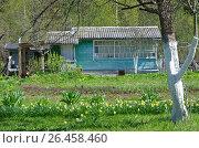 Купить «Дачный домик на садовом участке», эксклюзивное фото № 26458460, снято 18 мая 2017 г. (c) Елена Коромыслова / Фотобанк Лори