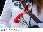 Купить «Три красные гвоздики в руках женщины и Георгиевская лента, прикрепленная на ремешок сумки», фото № 26482520, снято 9 мая 2017 г. (c) Кекяляйнен Андрей / Фотобанк Лори