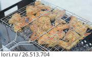 Купить «Shish kebab from poultry meat on skewers is cooked on a brazier in the winter», видеоролик № 26513704, снято 1 мая 2017 г. (c) Mikhail Davidovich / Фотобанк Лори