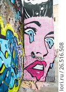Купить «Граффити (Graffiti) в центре Москвы», эксклюзивное фото № 26516508, снято 21 марта 2014 г. (c) Алёшина Оксана / Фотобанк Лори
