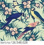 Seamless vintage pattern with macaws sitting on branches. Hand drawn vector. Стоковая иллюстрация, иллюстратор Irene Shumay / Фотобанк Лори