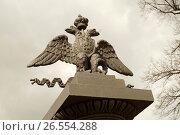 Двуглавый орел (2017 год). Стоковое фото, фотограф Анастасия Давидович / Фотобанк Лори