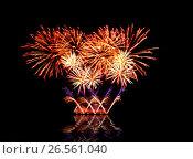 Купить «Beautiful fireworks in a night sky», фото № 26561040, снято 9 августа 2015 г. (c) ElenArt / Фотобанк Лори