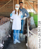 Купить «Farmer and veterinarian in pig sty», фото № 26561728, снято 21 октября 2018 г. (c) Яков Филимонов / Фотобанк Лори