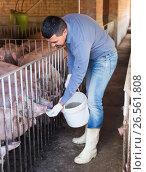 Купить «Portrait of male farmer feeding domestic pigs», фото № 26561808, снято 15 октября 2018 г. (c) Яков Филимонов / Фотобанк Лори