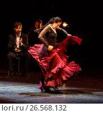 Maria Pages, spanish flamenco dancer (2014 год). Редакционное фото, фотограф Matej Kastelic / Фотобанк Лори