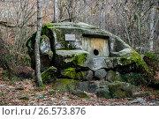Купить «Сочи, село Волконское, долмен-монолит в долине ручья Годлик», фото № 26573876, снято 24 апреля 2019 г. (c) glokaya_kuzdra / Фотобанк Лори